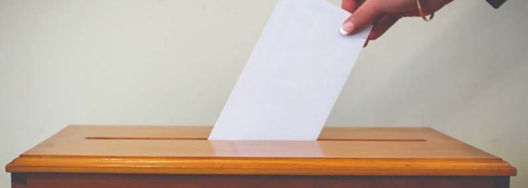 Electronic Voting image